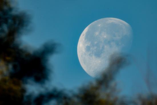 呉市の朝の月