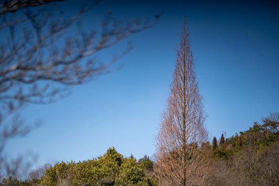 広島県呉市焼山公園